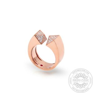 Ring Sauvage prive